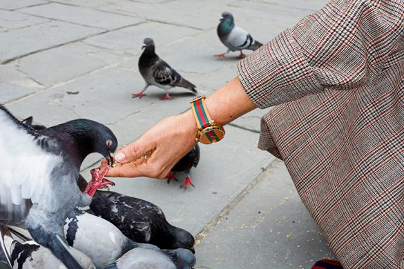 Martinparr Gucci Advertising Int 2