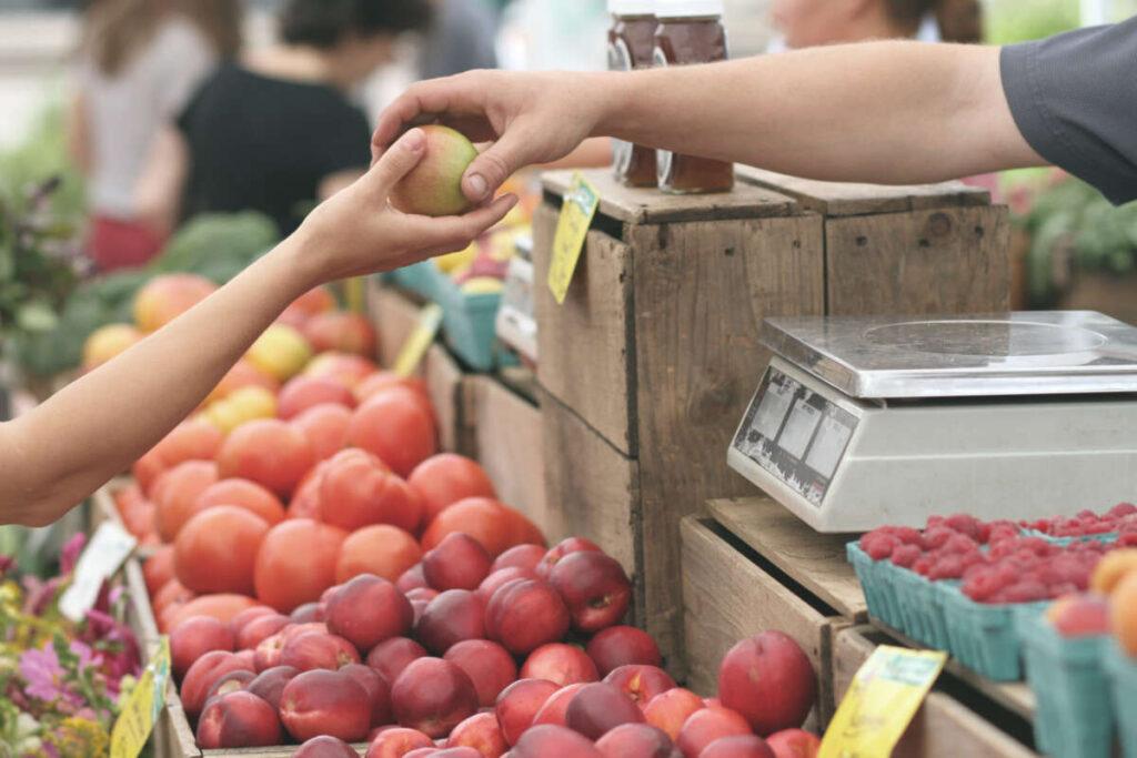 Apple Business Fruit Local 95425